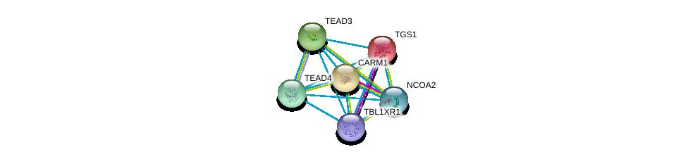 http://string-db.org/version_10/api/image/networkList?limit=0&targetmode=proteins&caller_identity=gene_cards&network_flavor=evidence&identifiers=9606.ENSP00000345772%0d%0a9606.ENSP00000405574%0d%0a9606.ENSP00000260129%0d%0a9606.ENSP00000352926%0d%0a9606.ENSP00000325690%0d%0a9606.ENSP00000399968%0d%0a