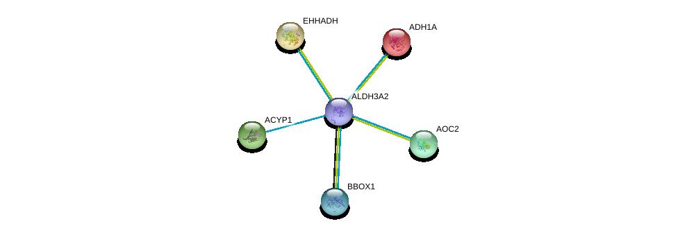 http://string-db.org/version_10/api/image/networkList?limit=0&targetmode=proteins&caller_identity=gene_cards&network_flavor=evidence&identifiers=9606.ENSP00000345774%0d%0a9606.ENSP00000209668%0d%0a9606.ENSP00000231887%0d%0a9606.ENSP00000238618%0d%0a9606.ENSP00000253799%0d%0a9606.ENSP00000263182%0d%0a