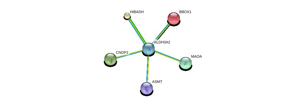 http://string-db.org/version_10/api/image/networkList?limit=0&targetmode=proteins&caller_identity=gene_cards&network_flavor=evidence&identifiers=9606.ENSP00000345774%0d%0a9606.ENSP00000370639%0d%0a9606.ENSP00000340684%0d%0a9606.ENSP00000325548%0d%0a9606.ENSP00000265395%0d%0a9606.ENSP00000263182%0d%0a