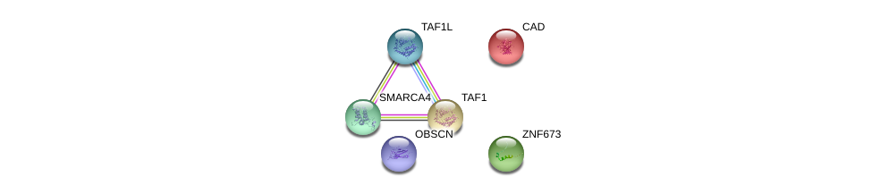 http://string-db.org/version_10/api/image/networkList?limit=0&targetmode=proteins&caller_identity=gene_cards&network_flavor=evidence&identifiers=9606.ENSP00000345797%0d%0a9606.ENSP00000264705%0d%0a9606.ENSP00000455507%0d%0a9606.ENSP00000418379%0d%0a9606.ENSP00000276072%0d%0a9606.ENSP00000350720%0d%0a