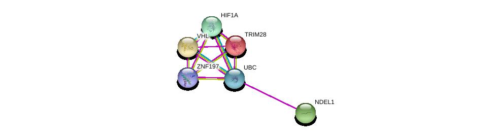 http://string-db.org/version_10/api/image/networkList?limit=0&targetmode=proteins&caller_identity=gene_cards&network_flavor=evidence&identifiers=9606.ENSP00000345809%0d%0a9606.ENSP00000256474%0d%0a9606.ENSP00000253024%0d%0a9606.ENSP00000338018%0d%0a9606.ENSP00000344818%0d%0a9606.ENSP00000333982%0d%0a