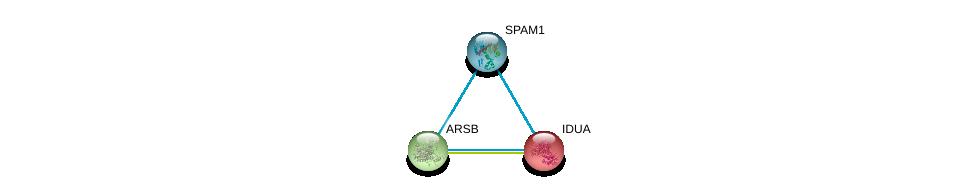 http://string-db.org/version_10/api/image/networkList?limit=0&targetmode=proteins&caller_identity=gene_cards&network_flavor=evidence&identifiers=9606.ENSP00000345849%0d%0a9606.ENSP00000247933%0d%0a9606.ENSP00000264914%0d%0a