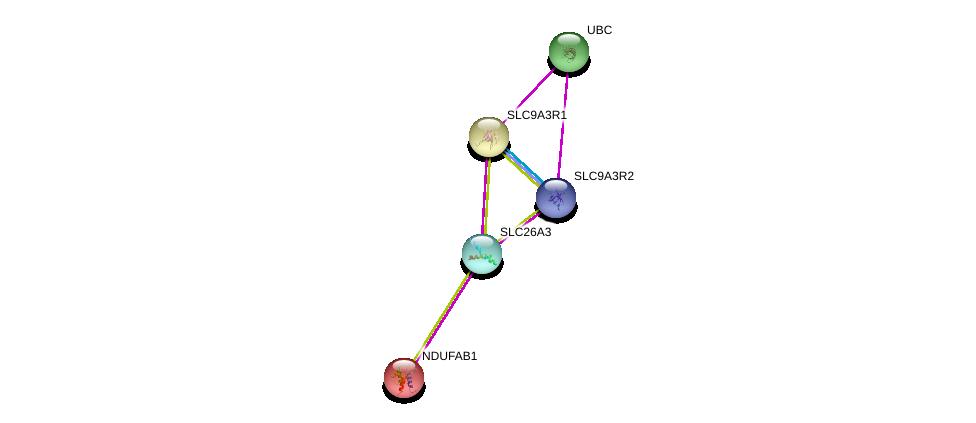 http://string-db.org/version_10/api/image/networkList?limit=0&targetmode=proteins&caller_identity=gene_cards&network_flavor=evidence&identifiers=9606.ENSP00000345873%0d%0a9606.ENSP00000408005%0d%0a9606.ENSP00000262613%0d%0a9606.ENSP00000262613%0d%0a9606.ENSP00000007516%0d%0a9606.ENSP00000344818%0d%0a