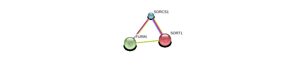 http://string-db.org/version_10/api/image/networkList?limit=0&targetmode=proteins&caller_identity=gene_cards&network_flavor=evidence&identifiers=9606.ENSP00000345964%0d%0a9606.ENSP00000256637%0d%0a9606.ENSP00000268171%0d%0a