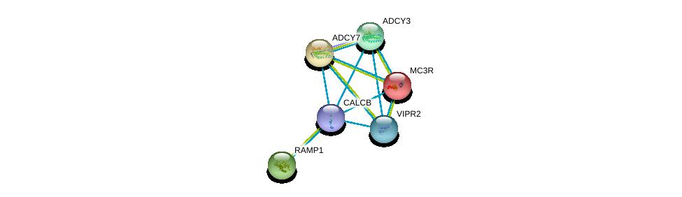 http://string-db.org/version_10/api/image/networkList?limit=0&targetmode=proteins&caller_identity=gene_cards&network_flavor=evidence&identifiers=9606.ENSP00000346017%0d%0a9606.ENSP00000243911%0d%0a9606.ENSP00000254235%0d%0a9606.ENSP00000254661%0d%0a9606.ENSP00000260600%0d%0a9606.ENSP00000262178%0d%0a