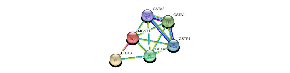 http://string-db.org/version_10/api/image/networkList?limit=0&targetmode=proteins&caller_identity=gene_cards&network_flavor=evidence&identifiers=9606.ENSP00000346103%0d%0a9606.ENSP00000381607%0d%0a9606.ENSP00000335620%0d%0a9606.ENSP00000010404%0d%0a9606.ENSP00000420168%0d%0a9606.ENSP00000292596%0d%0a