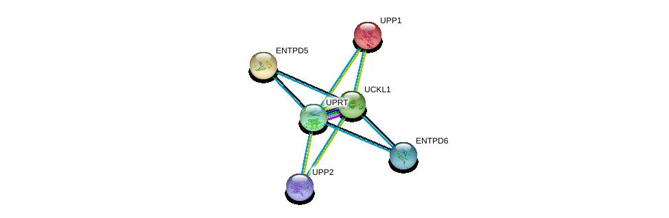 http://string-db.org/version_10/api/image/networkList?limit=0&targetmode=proteins&caller_identity=gene_cards&network_flavor=evidence&identifiers=9606.ENSP00000346155%0d%0a9606.ENSP00000362481%0d%0a9606.ENSP00000330032%0d%0a9606.ENSP00000387230%0d%0a9606.ENSP00000365840%0d%0a9606.ENSP00000335246%0d%0a