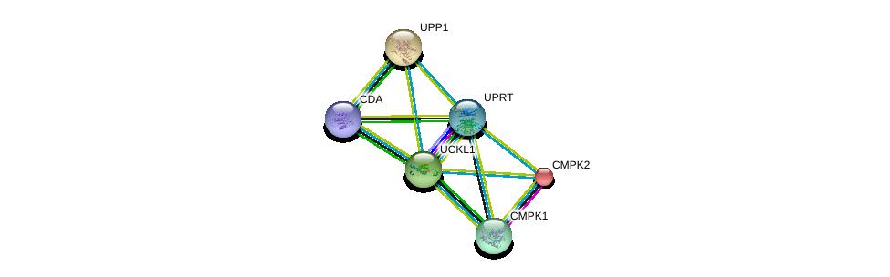 http://string-db.org/version_10/api/image/networkList?limit=0&targetmode=proteins&caller_identity=gene_cards&network_flavor=evidence&identifiers=9606.ENSP00000346155%0d%0a9606.ENSP00000362481%0d%0a9606.ENSP00000360939%0d%0a9606.ENSP00000364212%0d%0a9606.ENSP00000256722%0d%0a9606.ENSP00000330032%0d%0a