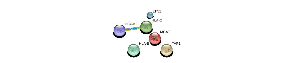 http://string-db.org/version_10/api/image/networkList?limit=0&targetmode=proteins&caller_identity=gene_cards&network_flavor=evidence&identifiers=9606.ENSP00000346206%0d%0a9606.ENSP00000399168%0d%0a9606.ENSP00000365402%0d%0a9606.ENSP00000365817%0d%0a9606.ENSP00000373846%0d%0a9606.ENSP00000290429%0d%0a