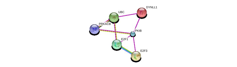 http://string-db.org/version_10/api/image/networkList?limit=0&targetmode=proteins&caller_identity=gene_cards&network_flavor=evidence&identifiers=9606.ENSP00000346227%0d%0a9606.ENSP00000359719%0d%0a9606.ENSP00000242577%0d%0a9606.ENSP00000262904%0d%0a9606.ENSP00000345571%0d%0a9606.ENSP00000344818%0d%0a
