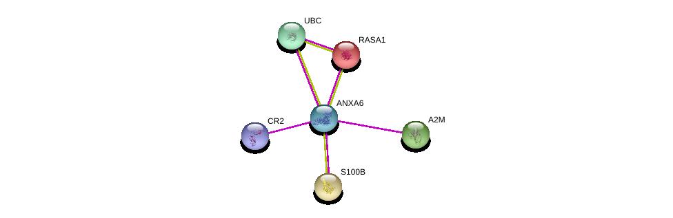 http://string-db.org/version_10/api/image/networkList?limit=0&targetmode=proteins&caller_identity=gene_cards&network_flavor=evidence&identifiers=9606.ENSP00000346550%0d%0a9606.ENSP00000344818%0d%0a9606.ENSP00000274376%0d%0a9606.ENSP00000323929%0d%0a9606.ENSP00000291700%0d%0a9606.ENSP00000356024%0d%0a