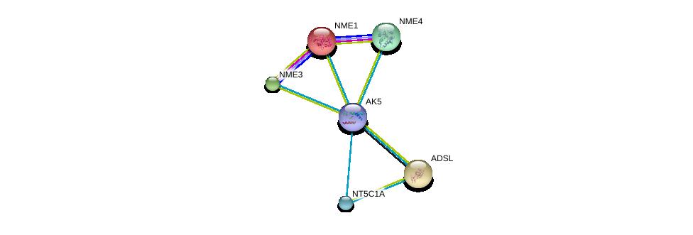 http://string-db.org/version_10/api/image/networkList?limit=0&targetmode=proteins&caller_identity=gene_cards&network_flavor=evidence&identifiers=9606.ENSP00000346577%0d%0a9606.ENSP00000013034%0d%0a9606.ENSP00000216194%0d%0a9606.ENSP00000219302%0d%0a9606.ENSP00000219479%0d%0a9606.ENSP00000235628%0d%0a