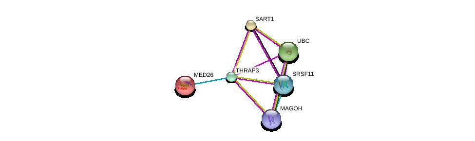 http://string-db.org/version_10/api/image/networkList?limit=0&targetmode=proteins&caller_identity=gene_cards&network_flavor=evidence&identifiers=9606.ENSP00000346634%0d%0a9606.ENSP00000360525%0d%0a9606.ENSP00000344818%0d%0a9606.ENSP00000310448%0d%0a9606.ENSP00000359988%0d%0a9606.ENSP00000263390%0d%0a