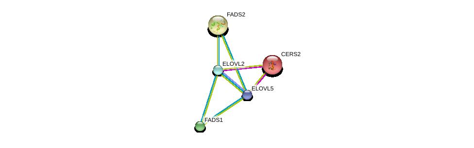 http://string-db.org/version_10/api/image/networkList?limit=0&targetmode=proteins&caller_identity=gene_cards&network_flavor=evidence&identifiers=9606.ENSP00000346693%0d%0a9606.ENSP00000438095%0d%0a9606.ENSP00000278840%0d%0a9606.ENSP00000322229%0d%0a9606.ENSP00000322229%0d%0a9606.ENSP00000271688%0d%0a