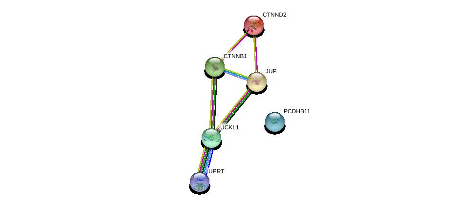 http://string-db.org/version_10/api/image/networkList?limit=0&targetmode=proteins&caller_identity=gene_cards&network_flavor=evidence&identifiers=9606.ENSP00000346802%0d%0a9606.ENSP00000311113%0d%0a9606.ENSP00000362481%0d%0a9606.ENSP00000346155%0d%0a9606.ENSP00000344456%0d%0a9606.ENSP00000307134%0d%0a