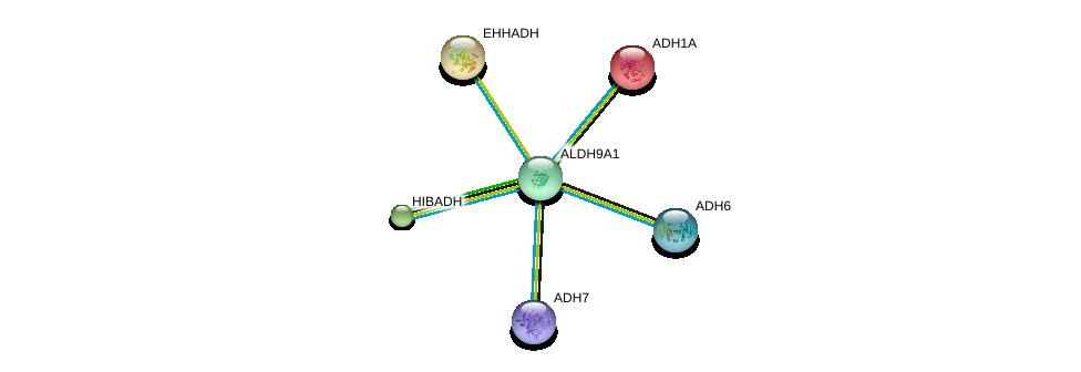 http://string-db.org/version_10/api/image/networkList?limit=0&targetmode=proteins&caller_identity=gene_cards&network_flavor=evidence&identifiers=9606.ENSP00000346827%0d%0a9606.ENSP00000231887%0d%0a9606.ENSP00000265395%0d%0a9606.ENSP00000378359%0d%0a9606.ENSP00000209668%0d%0a9606.ENSP00000420269%0d%0a
