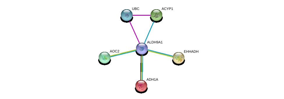 http://string-db.org/version_10/api/image/networkList?limit=0&targetmode=proteins&caller_identity=gene_cards&network_flavor=evidence&identifiers=9606.ENSP00000346827%0d%0a9606.ENSP00000344818%0d%0a9606.ENSP00000209668%0d%0a9606.ENSP00000231887%0d%0a9606.ENSP00000238618%0d%0a9606.ENSP00000253799%0d%0a