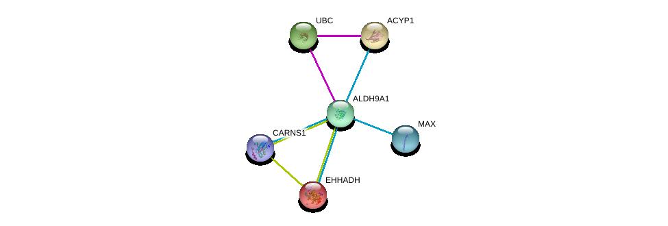 http://string-db.org/version_10/api/image/networkList?limit=0&targetmode=proteins&caller_identity=gene_cards&network_flavor=evidence&identifiers=9606.ENSP00000346827%0d%0a9606.ENSP00000344818%0d%0a9606.ENSP00000389009%0d%0a9606.ENSP00000231887%0d%0a9606.ENSP00000351490%0d%0a9606.ENSP00000238618%0d%0a