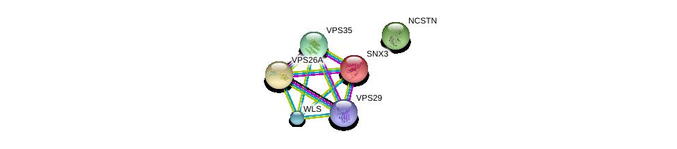 http://string-db.org/version_10/api/image/networkList?limit=0&targetmode=proteins&caller_identity=gene_cards&network_flavor=evidence&identifiers=9606.ENSP00000346829%0d%0a9606.ENSP00000263559%0d%0a9606.ENSP00000380795%0d%0a9606.ENSP00000299138%0d%0a9606.ENSP00000230085%0d%0a9606.ENSP00000294785%0d%0a