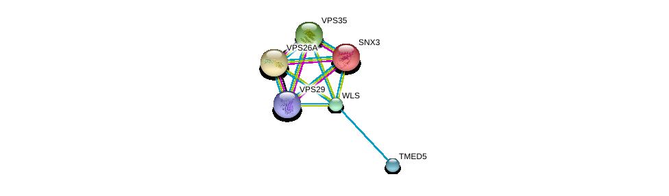 http://string-db.org/version_10/api/image/networkList?limit=0&targetmode=proteins&caller_identity=gene_cards&network_flavor=evidence&identifiers=9606.ENSP00000346829%0d%0a9606.ENSP00000380795%0d%0a9606.ENSP00000359305%0d%0a9606.ENSP00000299138%0d%0a9606.ENSP00000263559%0d%0a9606.ENSP00000230085%0d%0a