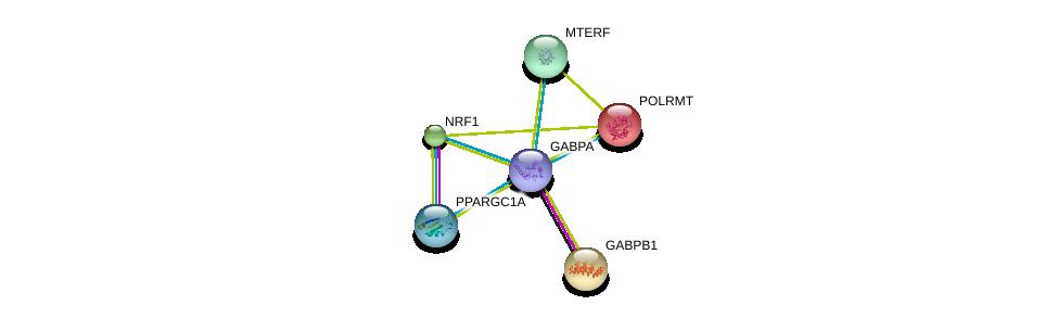 http://string-db.org/version_10/api/image/networkList?limit=0&targetmode=proteins&caller_identity=gene_cards&network_flavor=evidence&identifiers=9606.ENSP00000346886%0d%0a9606.ENSP00000220429%0d%0a9606.ENSP00000215591%0d%0a9606.ENSP00000223190%0d%0a9606.ENSP00000248643%0d%0a9606.ENSP00000264867%0d%0a