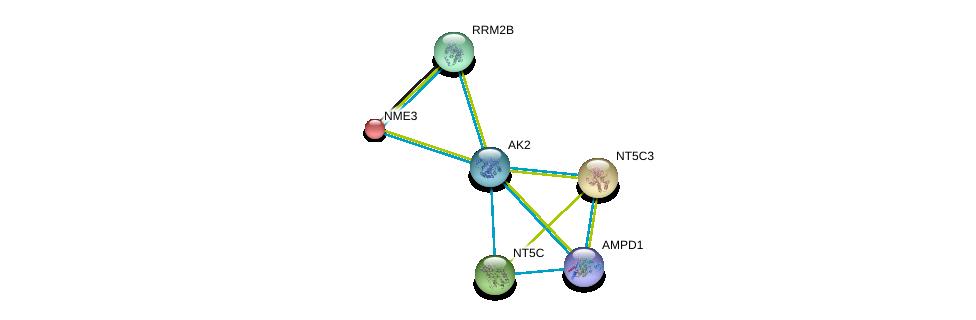 http://string-db.org/version_10/api/image/networkList?limit=0&targetmode=proteins&caller_identity=gene_cards&network_flavor=evidence&identifiers=9606.ENSP00000346921%0d%0a9606.ENSP00000242210%0d%0a9606.ENSP00000245552%0d%0a9606.ENSP00000430075%0d%0a9606.ENSP00000219302%0d%0a9606.ENSP00000251810%0d%0a