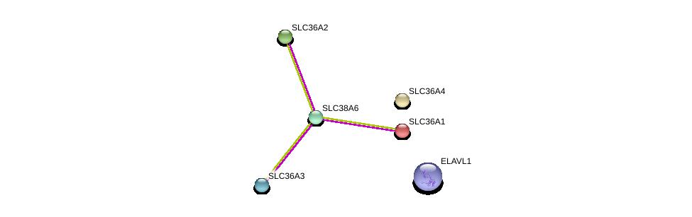 http://string-db.org/version_10/api/image/networkList?limit=0&targetmode=proteins&caller_identity=gene_cards&network_flavor=evidence&identifiers=9606.ENSP00000346959%0d%0a9606.ENSP00000385269%0d%0a9606.ENSP00000243389%0d%0a9606.ENSP00000317382%0d%0a9606.ENSP00000334223%0d%0a9606.ENSP00000366942%0d%0a