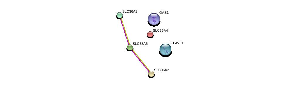 http://string-db.org/version_10/api/image/networkList?limit=0&targetmode=proteins&caller_identity=gene_cards&network_flavor=evidence&identifiers=9606.ENSP00000346959%0d%0a9606.ENSP00000385269%0d%0a9606.ENSP00000388001%0d%0a9606.ENSP00000366942%0d%0a9606.ENSP00000334223%0d%0a9606.ENSP00000317382%0d%0a
