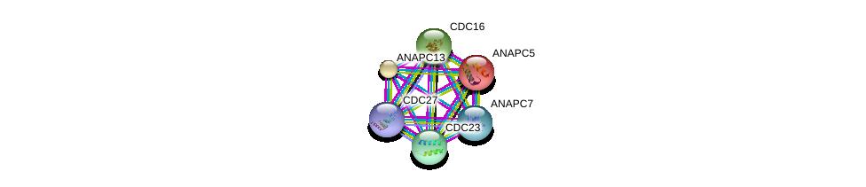 http://string-db.org/version_10/api/image/networkList?limit=0&targetmode=proteins&caller_identity=gene_cards&network_flavor=evidence&identifiers=9606.ENSP00000346987%0d%0a9606.ENSP00000348554%0d%0a9606.ENSP00000378350%0d%0a9606.ENSP00000394394%0d%0a9606.ENSP00000261819%0d%0a9606.ENSP00000434614%0d%0a