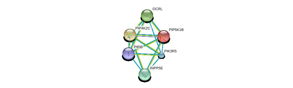 http://string-db.org/version_10/api/image/networkList?limit=0&targetmode=proteins&caller_identity=gene_cards&network_flavor=evidence&identifiers=9606.ENSP00000347032%0d%0a9606.ENSP00000392812%0d%0a9606.ENSP00000360154%0d%0a9606.ENSP00000265382%0d%0a9606.ENSP00000471914%0d%0a9606.ENSP00000360777%0d%0a
