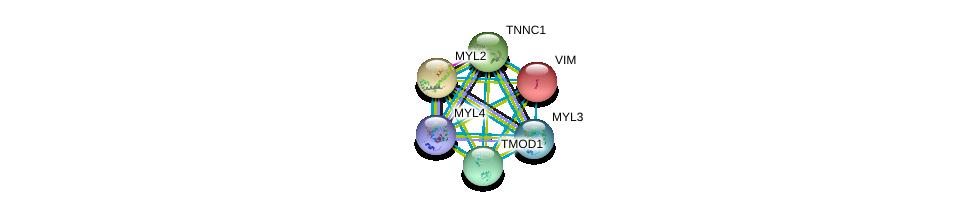 http://string-db.org/version_10/api/image/networkList?limit=0&targetmode=proteins&caller_identity=gene_cards&network_flavor=evidence&identifiers=9606.ENSP00000347055%0d%0a9606.ENSP00000259365%0d%0a9606.ENSP00000232975%0d%0a9606.ENSP00000228841%0d%0a9606.ENSP00000224237%0d%0a9606.ENSP00000292327%0d%0a