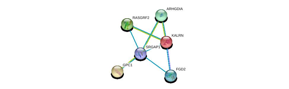 http://string-db.org/version_10/api/image/networkList?limit=0&targetmode=proteins&caller_identity=gene_cards&network_flavor=evidence&identifiers=9606.ENSP00000347198%0d%0a9606.ENSP00000240874%0d%0a9606.ENSP00000264039%0d%0a9606.ENSP00000265080%0d%0a9606.ENSP00000269321%0d%0a9606.ENSP00000274963%0d%0a