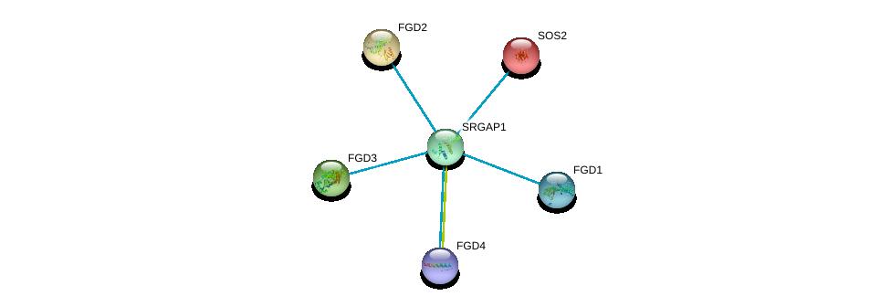 http://string-db.org/version_10/api/image/networkList?limit=0&targetmode=proteins&caller_identity=gene_cards&network_flavor=evidence&identifiers=9606.ENSP00000347198%0d%0a9606.ENSP00000274963%0d%0a9606.ENSP00000336914%0d%0a9606.ENSP00000364277%0d%0a9606.ENSP00000394487%0d%0a9606.ENSP00000216373%0d%0a