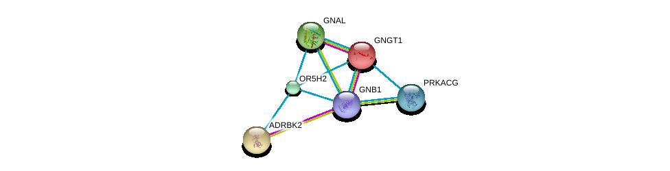 http://string-db.org/version_10/api/image/networkList?limit=0&targetmode=proteins&caller_identity=gene_cards&network_flavor=evidence&identifiers=9606.ENSP00000347418%0d%0a9606.ENSP00000248572%0d%0a9606.ENSP00000367869%0d%0a9606.ENSP00000334051%0d%0a9606.ENSP00000366488%0d%0a9606.ENSP00000317578%0d%0a