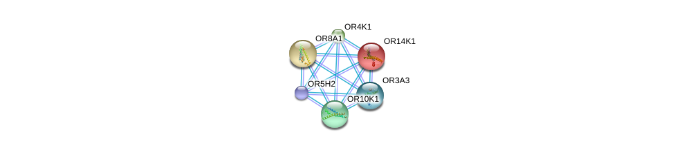 http://string-db.org/version_10/api/image/networkList?limit=0&targetmode=proteins&caller_identity=gene_cards&network_flavor=evidence&identifiers=9606.ENSP00000347418%0d%0a9606.ENSP00000283225%0d%0a9606.ENSP00000284287%0d%0a9606.ENSP00000285600%0d%0a9606.ENSP00000289451%0d%0a9606.ENSP00000291231%0d%0a
