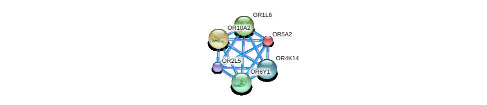 http://string-db.org/version_10/api/image/networkList?limit=0&targetmode=proteins&caller_identity=gene_cards&network_flavor=evidence&identifiers=9606.ENSP00000347428%0d%0a9606.ENSP00000305011%0d%0a9606.ENSP00000304807%0d%0a9606.ENSP00000304235%0d%0a9606.ENSP00000303862%0d%0a9606.ENSP00000303834%0d%0a