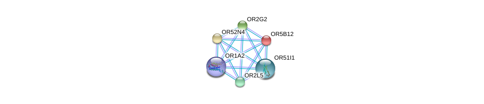 http://string-db.org/version_10/api/image/networkList?limit=0&targetmode=proteins&caller_identity=gene_cards&network_flavor=evidence&identifiers=9606.ENSP00000347428%0d%0a9606.ENSP00000369559%0d%0a9606.ENSP00000306657%0d%0a9606.ENSP00000326349%0d%0a9606.ENSP00000371377%0d%0a9606.ENSP00000323224%0d%0a