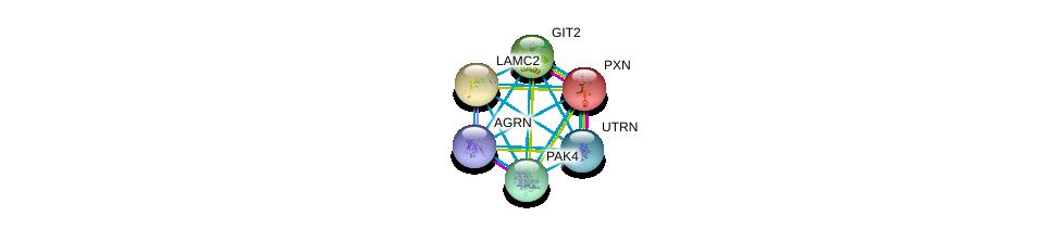 http://string-db.org/version_10/api/image/networkList?limit=0&targetmode=proteins&caller_identity=gene_cards&network_flavor=evidence&identifiers=9606.ENSP00000347464%0d%0a9606.ENSP00000228307%0d%0a9606.ENSP00000264144%0d%0a9606.ENSP00000356515%0d%0a9606.ENSP00000351049%0d%0a9606.ENSP00000368678%0d%0a
