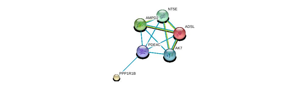 http://string-db.org/version_10/api/image/networkList?limit=0&targetmode=proteins&caller_identity=gene_cards&network_flavor=evidence&identifiers=9606.ENSP00000347689%0d%0a9606.ENSP00000216194%0d%0a9606.ENSP00000254079%0d%0a9606.ENSP00000256578%0d%0a9606.ENSP00000257770%0d%0a9606.ENSP00000267584%0d%0a