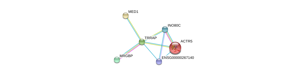 http://string-db.org/version_10/api/image/networkList?limit=0&targetmode=proteins&caller_identity=gene_cards&network_flavor=evidence&identifiers=9606.ENSP00000347733%0d%0a9606.ENSP00000359518%0d%0a9606.ENSP00000467041%0d%0a9606.ENSP00000391457%0d%0a9606.ENSP00000243903%0d%0a9606.ENSP00000300651%0d%0a