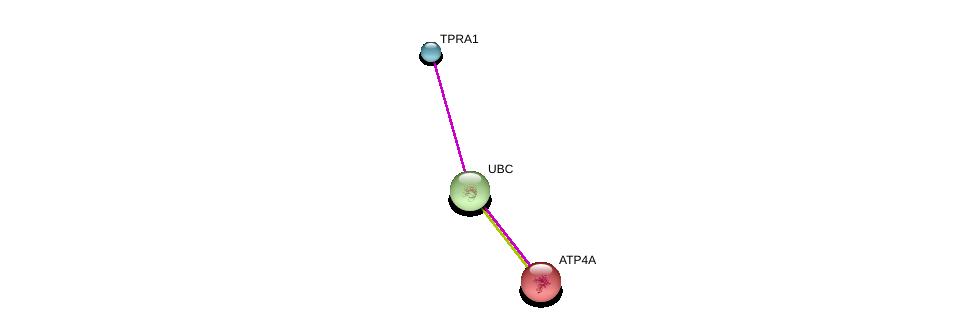 http://string-db.org/version_10/api/image/networkList?limit=0&targetmode=proteins&caller_identity=gene_cards&network_flavor=evidence&identifiers=9606.ENSP00000347748%0d%0a9606.ENSP00000344818%0d%0a9606.ENSP00000262623%0d%0a