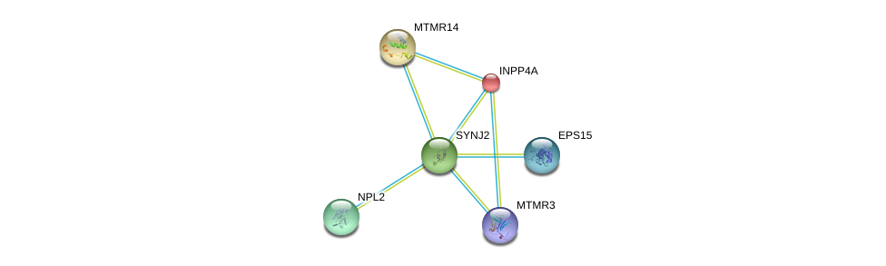 http://string-db.org/version_10/api/image/networkList?limit=0&targetmode=proteins&caller_identity=gene_cards&network_flavor=evidence&identifiers=9606.ENSP00000347792%0d%0a9606.ENSP00000074304%0d%0a9606.ENSP00000296003%0d%0a9606.ENSP00000384651%0d%0a9606.ENSP00000359683%0d%0a9606.ENSP00000360798%0d%0a