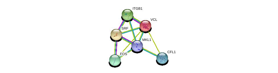 http://string-db.org/version_10/api/image/networkList?limit=0&targetmode=proteins&caller_identity=gene_cards&network_flavor=evidence&identifiers=9606.ENSP00000347847%0d%0a9606.ENSP00000265354%0d%0a9606.ENSP00000211998%0d%0a9606.ENSP00000303351%0d%0a9606.ENSP00000306245%0d%0a9606.ENSP00000309629%0d%0a