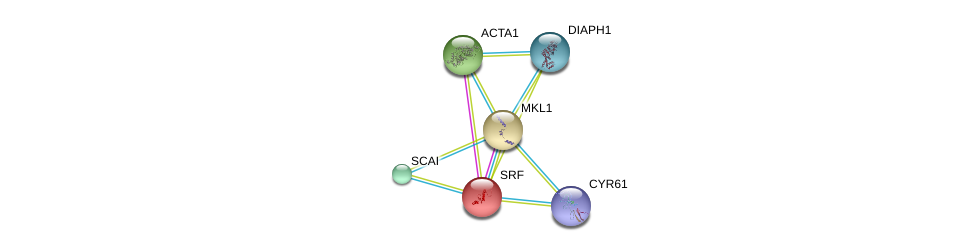 http://string-db.org/version_10/api/image/networkList?limit=0&targetmode=proteins&caller_identity=gene_cards&network_flavor=evidence&identifiers=9606.ENSP00000347847%0d%0a9606.ENSP00000265354%0d%0a9606.ENSP00000398736%0d%0a9606.ENSP00000381565%0d%0a9606.ENSP00000362650%0d%0a9606.ENSP00000355645%0d%0a