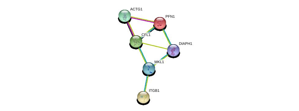 http://string-db.org/version_10/api/image/networkList?limit=0&targetmode=proteins&caller_identity=gene_cards&network_flavor=evidence&identifiers=9606.ENSP00000347847%0d%0a9606.ENSP00000331514%0d%0a9606.ENSP00000225655%0d%0a9606.ENSP00000303351%0d%0a9606.ENSP00000381565%0d%0a9606.ENSP00000309629%0d%0a