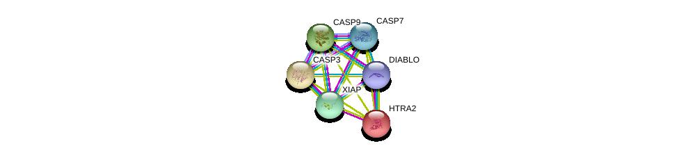 http://string-db.org/version_10/api/image/networkList?limit=0&targetmode=proteins&caller_identity=gene_cards&network_flavor=evidence&identifiers=9606.ENSP00000347858%0d%0a9606.ENSP00000258080%0d%0a9606.ENSP00000398495%0d%0a9606.ENSP00000311032%0d%0a9606.ENSP00000330237%0d%0a9606.ENSP00000358327%0d%0a