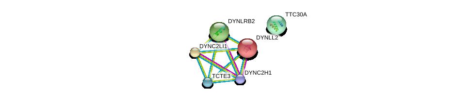 http://string-db.org/version_10/api/image/networkList?limit=0&targetmode=proteins&caller_identity=gene_cards&network_flavor=evidence&identifiers=9606.ENSP00000347915%0d%0a9606.ENSP00000302936%0d%0a9606.ENSP00000355736%0d%0a9606.ENSP00000240343%0d%0a9606.ENSP00000381167%0d%0a9606.ENSP00000260605%0d%0a