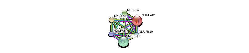 http://string-db.org/version_10/api/image/networkList?limit=0&targetmode=proteins&caller_identity=gene_cards&network_flavor=evidence&identifiers=9606.ENSP00000347988%0d%0a9606.ENSP00000252102%0d%0a9606.ENSP00000007516%0d%0a9606.ENSP00000268668%0d%0a9606.ENSP00000184266%0d%0a9606.ENSP00000215565%0d%0a