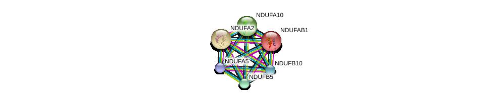http://string-db.org/version_10/api/image/networkList?limit=0&targetmode=proteins&caller_identity=gene_cards&network_flavor=evidence&identifiers=9606.ENSP00000347988%0d%0a9606.ENSP00000252102%0d%0a9606.ENSP00000007516%0d%0a9606.ENSP00000268668%0d%0a9606.ENSP00000252711%0d%0a9606.ENSP00000259037%0d%0a