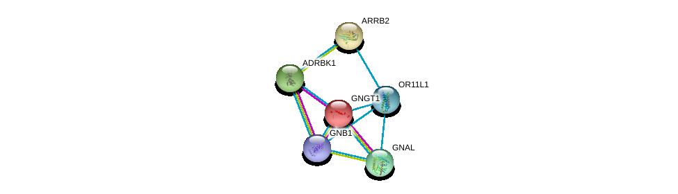 http://string-db.org/version_10/api/image/networkList?limit=0&targetmode=proteins&caller_identity=gene_cards&network_flavor=evidence&identifiers=9606.ENSP00000348033%0d%0a9606.ENSP00000334051%0d%0a9606.ENSP00000367869%0d%0a9606.ENSP00000248572%0d%0a9606.ENSP00000312262%0d%0a9606.ENSP00000269260%0d%0a